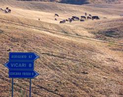 campagne presso Lercara