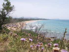 veduta della spiaggia della riserva - foce fiume Belice