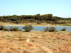oasi del Simeto