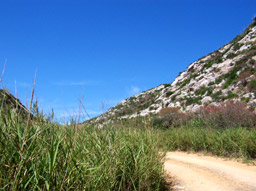 sentiero natura